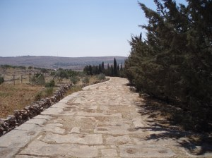 Roman road in Syria [DD]