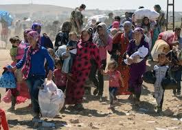 rojava yazidis