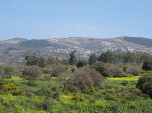 Photos from Golan and West Bank trip Feb 21-29 2016 773
