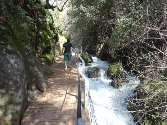 Photos from Golan and West Bank trip Feb 21-29 2016 778